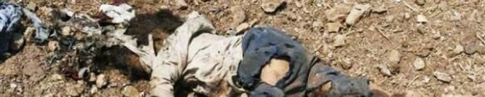 cropped-israel-war-crimes2.jpg